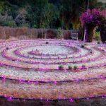 LavenderFieldsYogaMeditationRetreat14